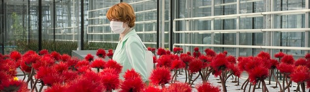 Little Joe - by Jessica Hausner - CANNES 2019: Austria's Jessica Hausner puts her name to a hugely cerebral psychoanalytical film with a societal focus, flirting with the genre of sci-fi chiller and the world of genetic mutations