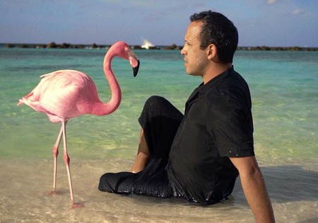 Review: The Mystery of the Pink Flamingo